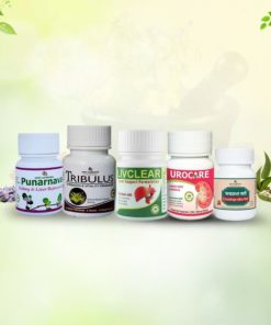 Ayurvedic Kidney Treatment