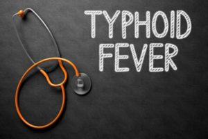 image of ayurvedic herbs for typhoid fever